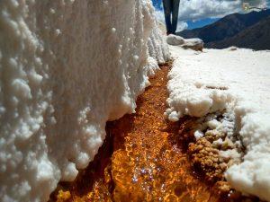 Salt in Maras - Cusco
