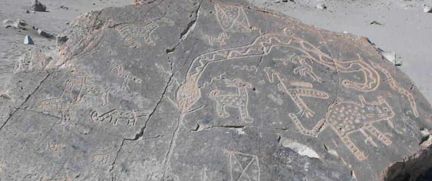 Toro-Muerto-Snake